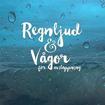 Regnljud och vågor för avslappning