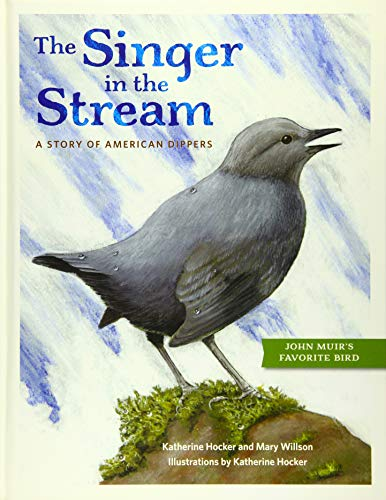 Singer in the Stream: A Story of American Dippers