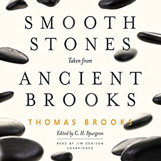 Smooth Stones Taken from Ancient Brooks audiobook cover art