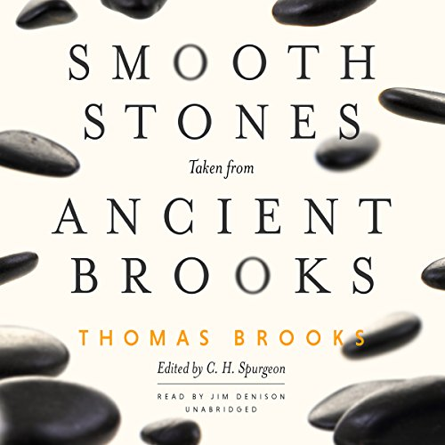 Smooth Stones Taken from Ancient Brooks cover art
