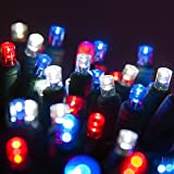 Outdoor Patriotic Lights - Red, White and Blue Lights - Patriotic Decorations, July 4 Decorations, Fourth of July Decorations (70 LED Mini Lights, 24 Ft, Red, White and Blue)