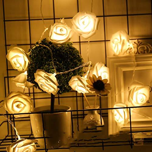 COSYOO 20 LED de 3 m de rosa de hadas de luz blanca cálida de color rosa luz de la noche de la cadena de luz