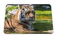 22cmx18cm マウスパッド (虎大きな猫ぶち顔捕食者) パターンカスタムの マウスパッド