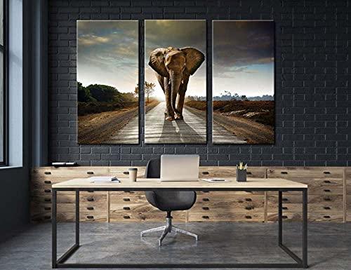 Gyybfhn Cuadro De Paneles Múltiples En 3 Piezas-Impresión En Lienzo 3 Piezas Impresiones Cuadros En Lienzo-Listo para Colgar-Moderna Decorativa Hogareña 50Cmx70Cmx3(Marco) Elefante