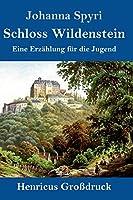Schloss Wildenstein (Grossdruck): Eine Erzaehlung fuer die Jugend