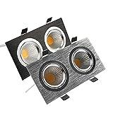 YASEking Cuadrado brillante empotrado doble LED Dimmable Dimpiente Downlight COB 14W 20W LED Spot Light Decoración Lámpara de techo AC 110V 220V (Emitting Color : Cold white)