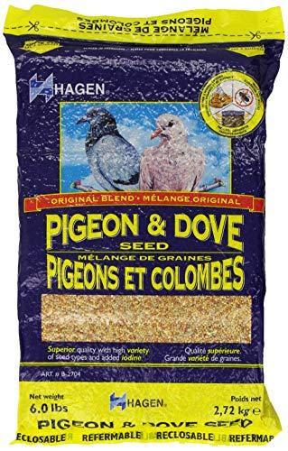 Hagen Pigeon & Dove Seed, Nutritionally Complete Bird Food