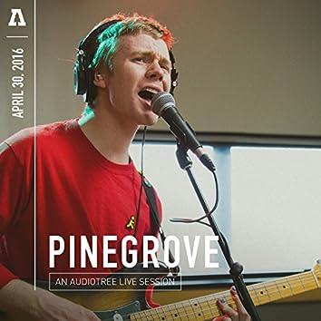 Pinegrove on Audiotree Live