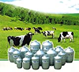 MXBAOHENG Tanque de almacenamiento de nitrógeno líquido criogénico serie YDS contenedor de nitrógeno líquido portátil (20 L)