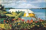 Pintura por números Pintura para adultos Winslow Homer famosa pintura de flores jardín y bungalow, Bermuda lienzo arte kit DIY pintura al óleo para principiantes