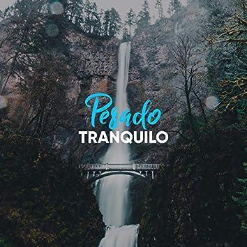 # 1 Album: Pesado Tranquilo