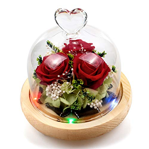 StillCool Eternal Rose Handmade Preserved Flower Red Rose with 5 Led Lights 10 Color Flashing Heart Design for Girls Valentine's Day Wedding Mother's Day Anniversary Birthday Thanksgiving Christmas