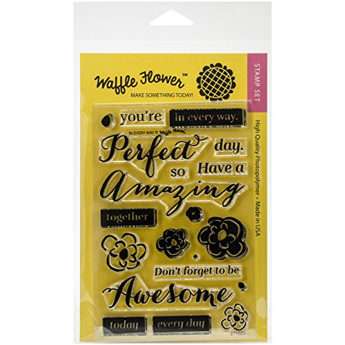 Waffle Flower Crafts Clear Stamps in Every Way, 4 x 6
