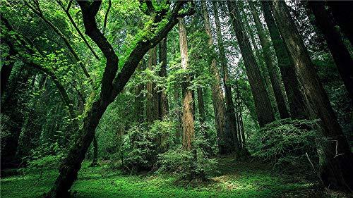 Nobranded Stichsäge Stichsäge 1000 Stück Puzzel Grüner Wald Für Erwachsene Freunde