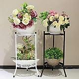 Somedays Porte Pot de Fleur Support pour Pot de Plante Support en Fer à Plusieurs Niveaux pour Balcon Salon Décor intérieur et...