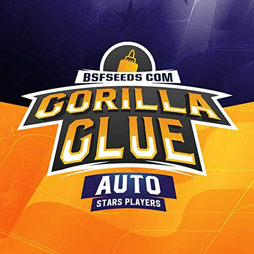 Gorilla Glue Auto (12)