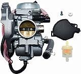 Autu Parts NEW Carburetor 0470-448 ATV for Arctic Cat 250 300 2x4 4x4 2001-2005 Red Green for Carb