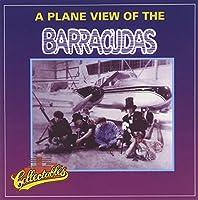 Plane View of the Barracudas