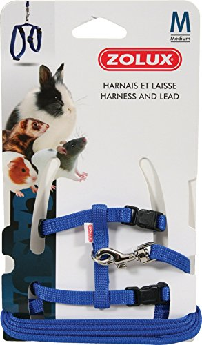 Zolux Casual Kit Harnais pour Petit Mammifère Bleu Taille M