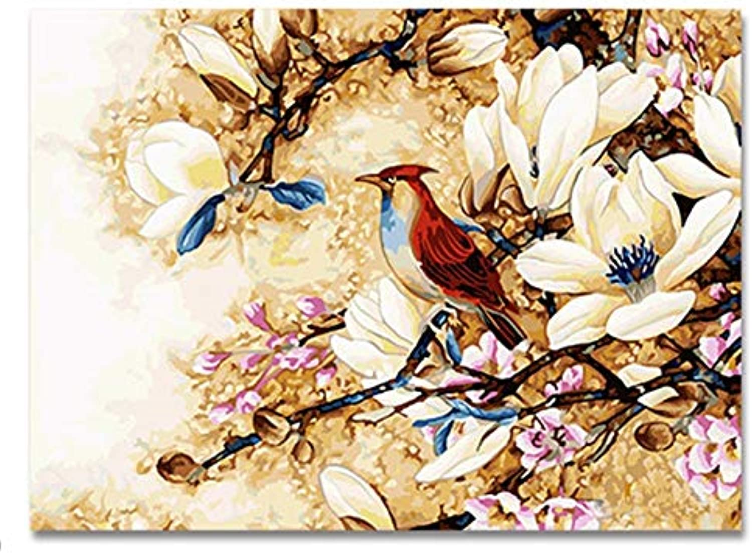 KYKDY New Digital DIY Oil Painting by Numbers Flowers and Birds Picture on Canvas Oil Paint coloring by Number Drawing,40x50cm