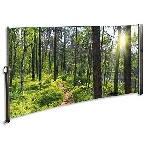 RABURG Seitenmarkise mit Foto Wald Rechts- Windschutz/Sichtschutz/Seitenrollo 160 x 300 cm