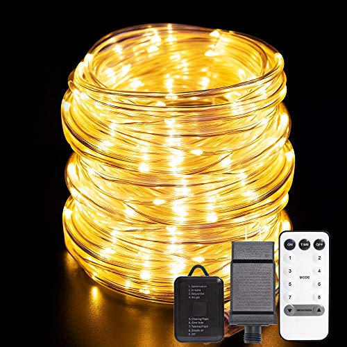 ANJAYLIA 66ft 200 LED Rope Lights Outdoor Waterproof String Lights Plug in with Remote Control Dimmable Twinkle Fairy Lights for Christmas Porch Deck Garden Party, Warm White