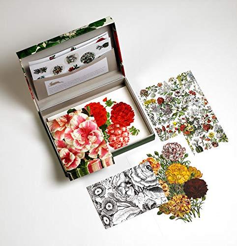 Flower Prints: Letter Writing Set / Briefpapier Set / Set de Correspondence: Letter Wrting Set - Briefpapier Set (PEPIN LETTER WRITING SETS)