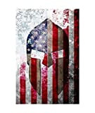 Molon Labe Themed Art Work - Distressed American Flag & Spartan Helmet Print on Archival Paper, Metal Sheet or Stretched Canvas
