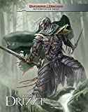 Dungeons & Dragons: The Legend of Drizzt - Neverwinter Tales (D&D Legend of Drizzt)