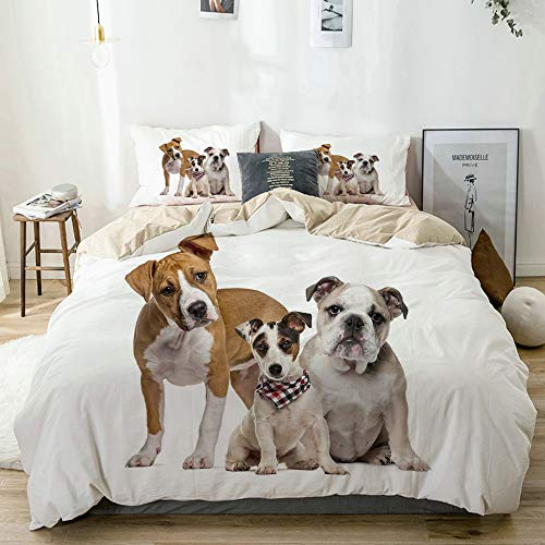 YOLIKA Duvet Cover Set Funny Studio Shot Photo of Lovely Various Breeds of Dogs Middle One Wears Scarf Print Beige Decorative 3 Piece Bedding Set with 2 Pillow Shams Double Size