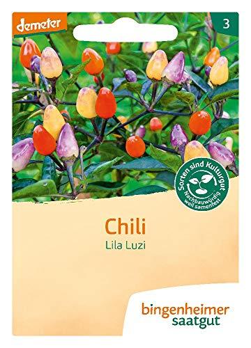 Bingenheimer Saatgut Chili Lila Luzi demeter bio für ca. 15 Pflanzen