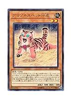 遊戯王 日本語版 DP18-JP009 Amazoness Baby Tiger アマゾネスペット仔虎 (レア)