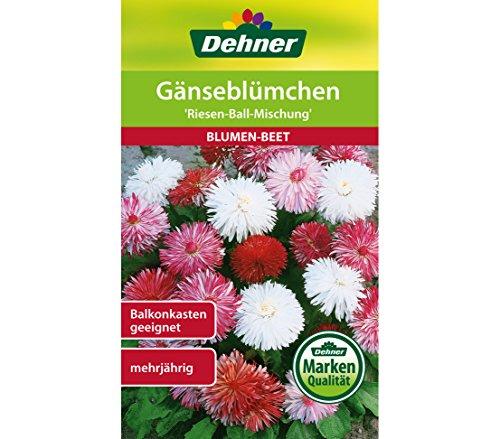 Dehner Blumen-Saatgut, Gänseblümchen
