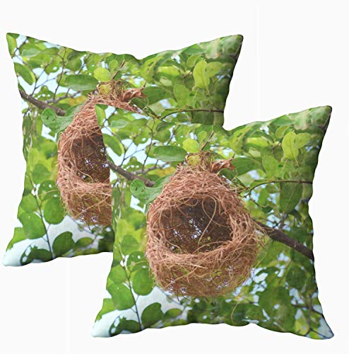 Fundas de almohada de cama, diseño de árbol de nido de pájaros de 45 x 45 cm, fundas de almohada para decoración del hogar, fundas de almohada con cremallera para sofá