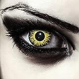 """Designlenses, Dos lentillas de color amarillo para Halloween Pennywise disfraz de doce mes sin dioprtías/corregir + gratis caso de lente """"Yellow Fear'"""