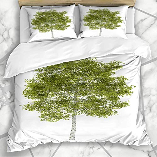 LIS HOME Bettbezug-Sets Betula Stem Birkenbaum Isolierte frühlingsgrüne Pflanze auf wei?er Farbe Stamm Niemand Zweig Naturpfad Weiche Mikrofaser Dekoratives Schlafzimmer mit 2 Kissen Shams