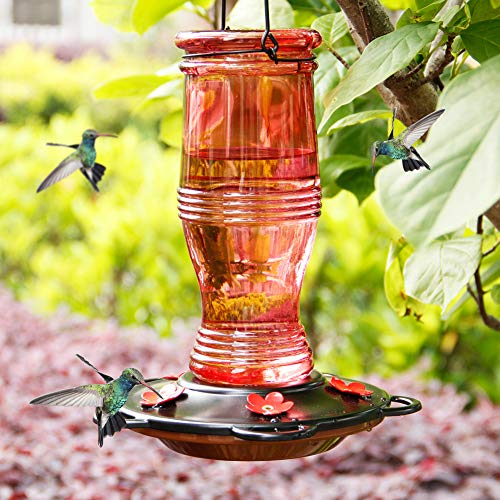 Juegoal Glass Hummingbird Feeders for Outdoors, 26 oz Wild Bird Feeder with 5 Feeding Ports, Metal Handle Hanging for Garden Tree Yard Outside Decoration, Red