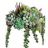 16 Pack Artificial Succulent Create...