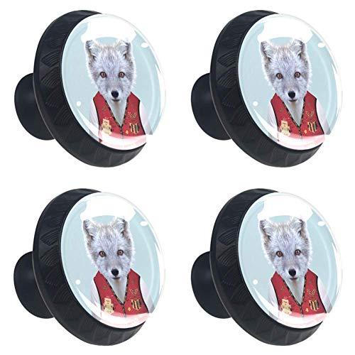 Hipster Waschbär in trendiger Kleidung Schubladenknauf Ziehgriff Kristallglas Kreisform Schrank Schubladenknäufe mit Schrauben für Zuhause Büro Schrank 4 Stück