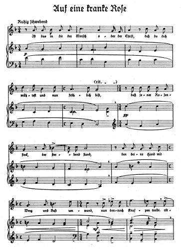 Neue Lieder nach Gedichten von Hermann Claudius : Singpartitur : SSolo/Klav