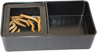 POPETPOP Cuencos de Comida Doble para Reptiles, Alimentador Rectangular de Plástico, Suministros de Alimentación