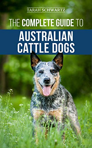 The Complete Guide to Australian Cattle Dogs: Finding, Training, Feeding, Exercising and Keeping Your ACD Active, Stimulated, and Happy (English Edition)