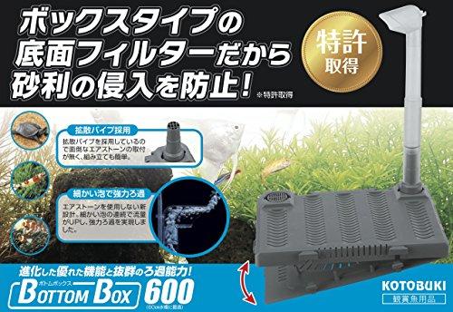 寿工芸『ボトムボックス600』