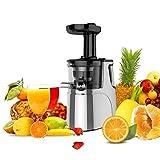 JAP Appliances SJ6188 - Vertikaler Entsafter - Slow Juicer für vollständiges Obst und Gemüse -...