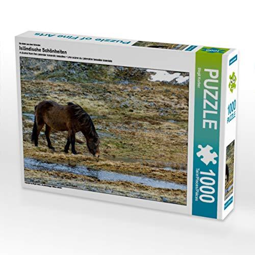CALVENDO Puzzle Isländische Schönheiten 1000 Teile Lege-Größe 64 x 48 cm Foto-Puzzle Bild von Birgit Korber