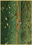 HuGuan PóSter Y Estampados 60x90cm Estilo Antiguo japonés Adecuado para la decoración del hogar T37 Lienzo Pintura Pared Arte Cuadros Sin Marco