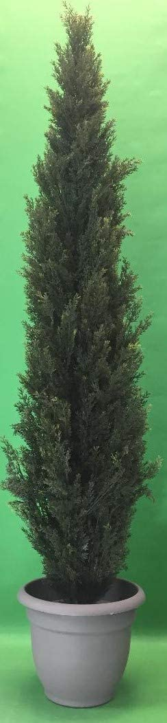 One Super beauty product restock quality top 6 Foot Outdoor Artificial Cedar Sale SALE% OFF Rated Topiary UV Tree Potted