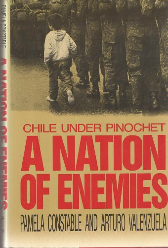 A Nation of Enemies: Chile Under Pinochetの詳細を見る