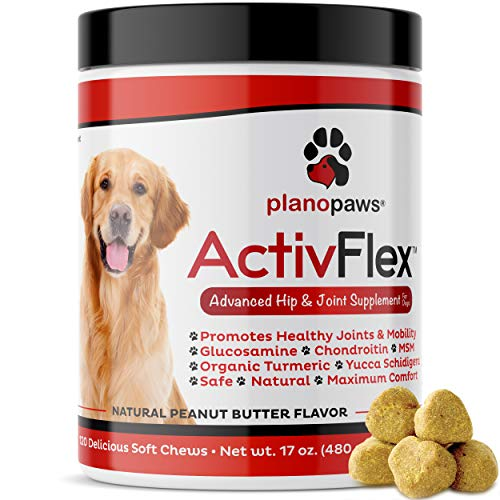 ActivFlex's Best Glucosamine for Dogs