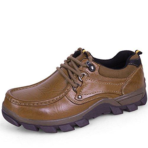 WOJIAO Männer Classic Style Walk Oxford Outdoor Wandern Schnürsenkel Schuhe Schwarz Braun Farben Herren (43 EU, Braun-Warm)